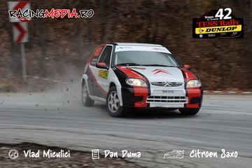 simone tempestini tess rally 2013
